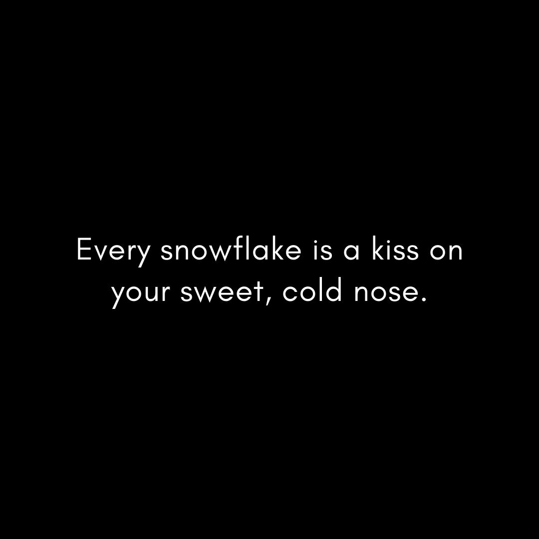 every-snowflake