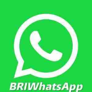 bri-whatsapp-feature